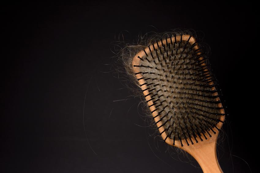 Hair Brush with Tangled Hair.